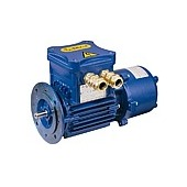 Flameproof electric motors Series D, H, P cast-iron