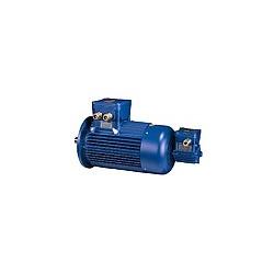 Motoare electrice antiex cu inverter incorporat