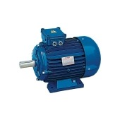 Non sparking electric motors EEX-NA