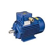 Flameproof electric motors Series A cast-iron 63-315