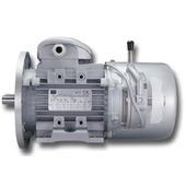 Brake electric motors