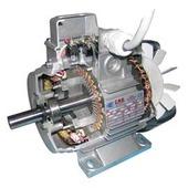 Double polarity electric motors