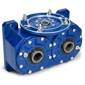 Double output worm gearboxes
